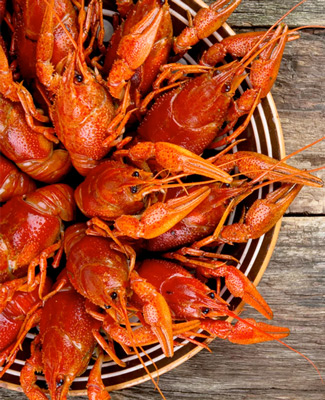 Shavers Catering - Crawfish